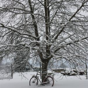 le 28 décembre 2014 : la neige est enfin là !