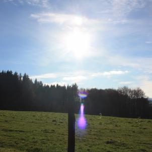 18 janvier 2015 : le soleil inonde la campagne